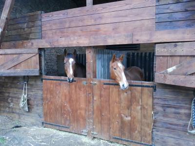 Vosnes (Jenny de la Cense) et Beaune (Fango In Blue)