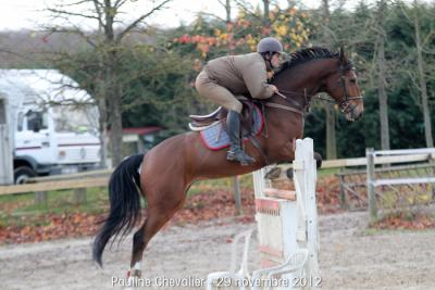 Tefnout - 29 Nov 2012 - P Chevalier